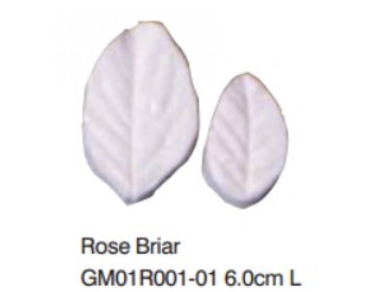 玫瑰葉-Rose Briar L