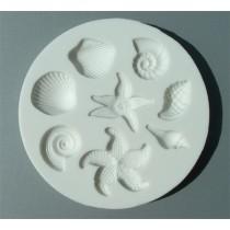 Shells and Starfish AM0035