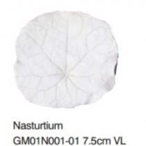 金蓮花葉-Nasturium VL