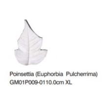 聖誕紅-Poinsettia XL