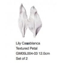 香水百合-Lily Casablanca
