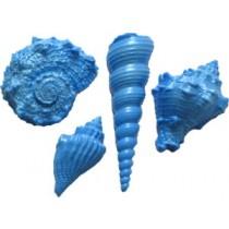 S102 4 Shell Set: 1 1/4 x 2 1/4 x 1/2